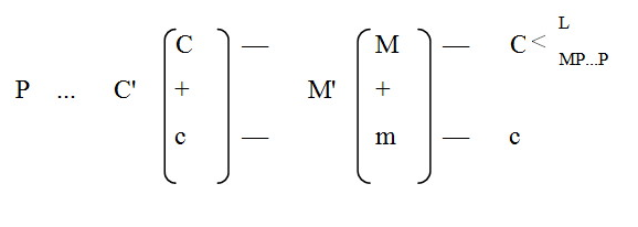 expanded-circuit-of-capital-formula